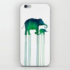 elephant_001 iPhone Skin