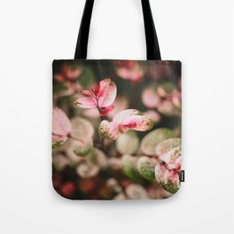 Perfectly spotted plant Tote Bag