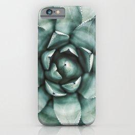 Succulent Plant, Desert Wall Art, Boho Decor, Cactus Print iPhone Case