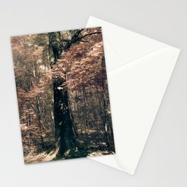 Tales from the trees 1 Stationery Cards
