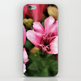 Passionate Pink Petals - Hope iPhone Skin