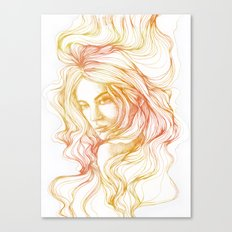 flow line Canvas Print