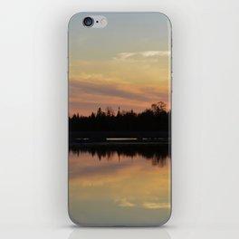 Creamsicle iPhone Skin