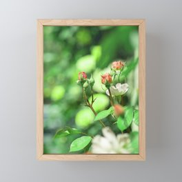 Princess garden Framed Mini Art Print