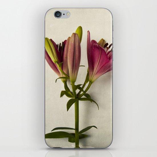 Botanical Lily No. 7719 iPhone & iPod Skin