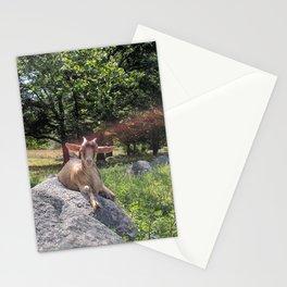 Sunshine and Goats Stationery Cards