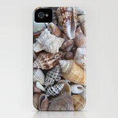Seashells iPhone (4, 4s) Slim Case