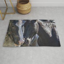 Bachelor Stallions - Pryor Mustangs Rug