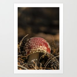 Red forest #2 Art Print
