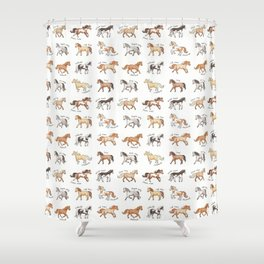 Horses - different colours and markings illustration Shower Curtain