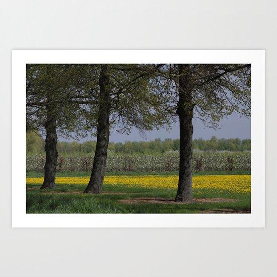 Between the Trees  - JUSTART © Art Print