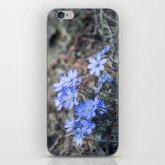 liverleaf iPhone Skin