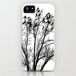 Birds of Austin iPhone Case