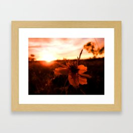 Lighted Framed Art Print