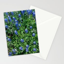 Stepping Out In Blue Stationery Cards