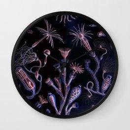 Ode to Haeckel's Deep Dark World Under the Sea Wall Clock
