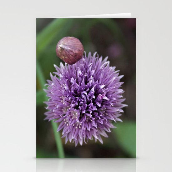 Wild Chive Flower Heads 2 Stationery Cards