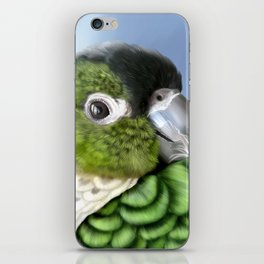 Thorin iPhone Skin
