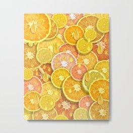 Juicy Fruits Metal Print