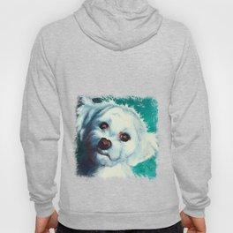 Maltese dog - Pelusa - by LiliFlore Hoody