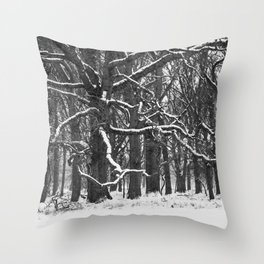 Tree in the winter (RR 272) Throw Pillow