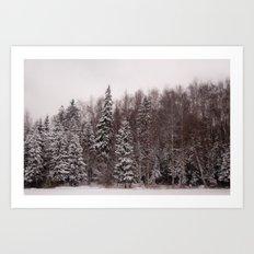 Winter 231 Art Print