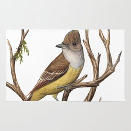 Great Crested Flycatcher (Myiarchus crinitus) Rug