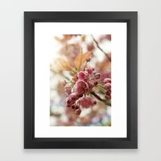 little buds Framed Art Print