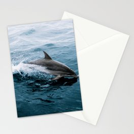 Dolphin in the Atlantic Ocean - Wildlife Photography Stationery Cards