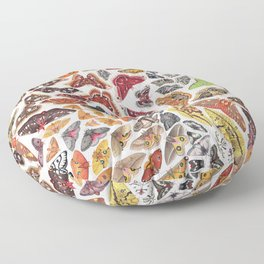 Saturniid Moths of North America Pattern Floor Pillow