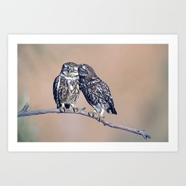 owls in love Art Print