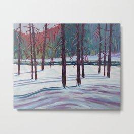 The Spruce Bog, Algonquin Park Metal Print