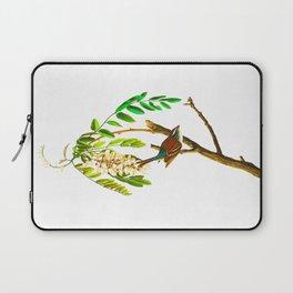 Chipping sparrow John James Audubon Vintage Scientific Bird illustration Laptop Sleeve
