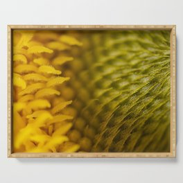 Extreme Macro Photo of a beautiful Sunflower. Serving Tray