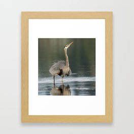Pacific Great Blue Heron | Display | Wildlife Photography | Birds | Nature Framed Art Print