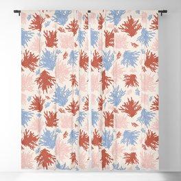 Shelly Beach Coral Print Blackout Curtain