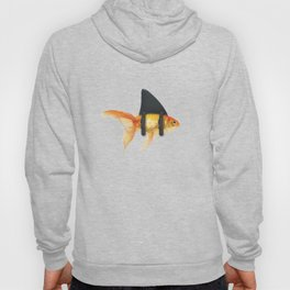BRILLIANT DISGUISE 02 Hoody
