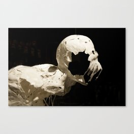 Reft Canvas Print