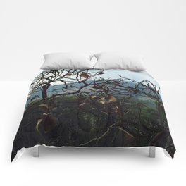 A Beautiful Day Comforters