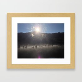 """Roots assemble before the sun.""  Nature series #1. Framed Art Print"