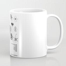 Begonia cabanillasii by Yu Pin Ang Coffee Mug