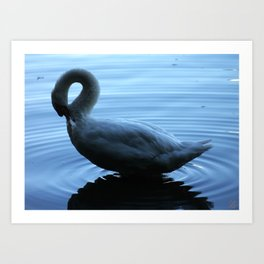 The Swan of Lost Lagoon Art Print