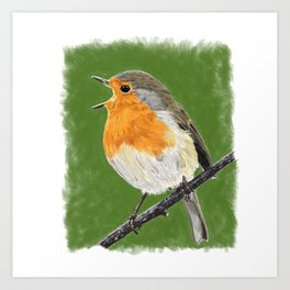 Robin 02 Art Print