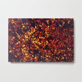Burning autumn - Light getting through leaves - Fine Art Photography Metal Print