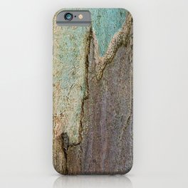 Eucalyptus Tree Bark and Wood Abstract Natural Texture 41 iPhone Case