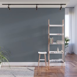 Iron Gray Solid Color Pairs with Sherwin Williams Haven 2020 Forecast Color Granite Peak SW6250 Wall Mural