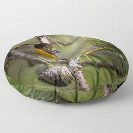 Oriole and Pine cone Floor Pillow