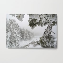 """Snowy forest"". At the foggy mountains... Metal Print"