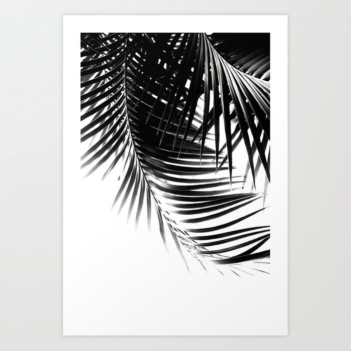Palm leaves black white vibes 1 tropical decor art society6