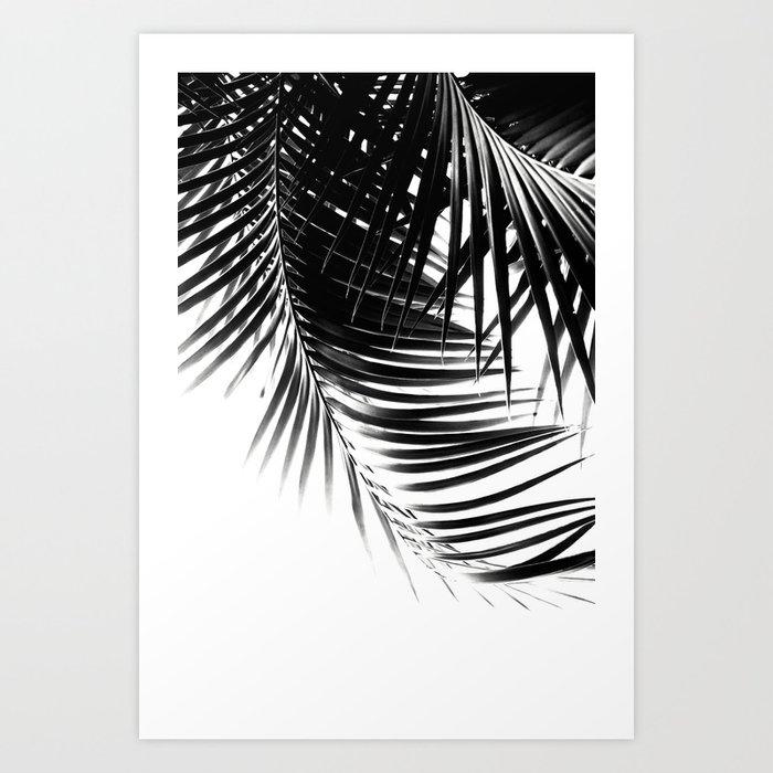 Palm Leaves Black & White Vibes #1 #tropical #decor #art #society6 Art Print